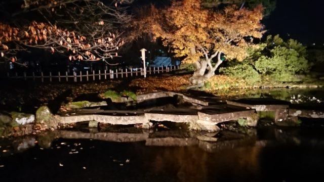 雁行橋のライトアップ