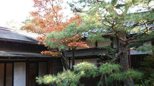 成巽閣の庭園2