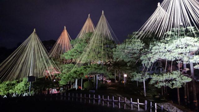 唐崎松のライトアップ