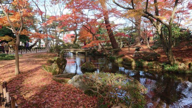 曲水と紅葉